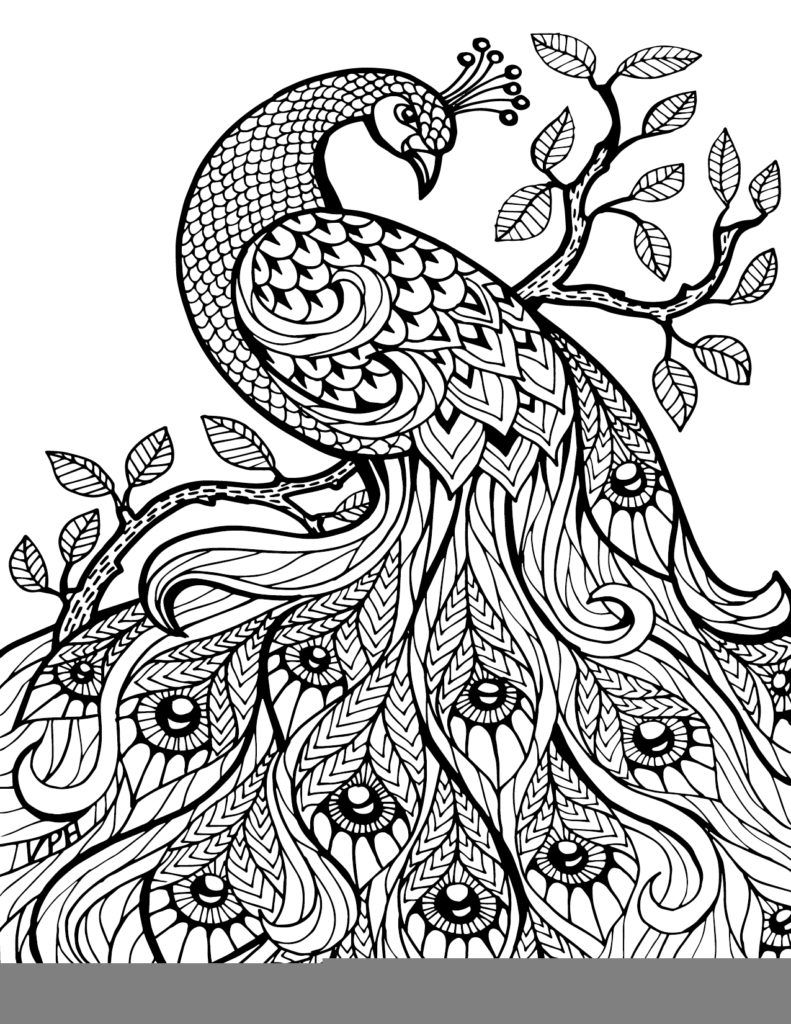 Coloring Pages: Free Printable Coloring Book Pages – Best Adult ...