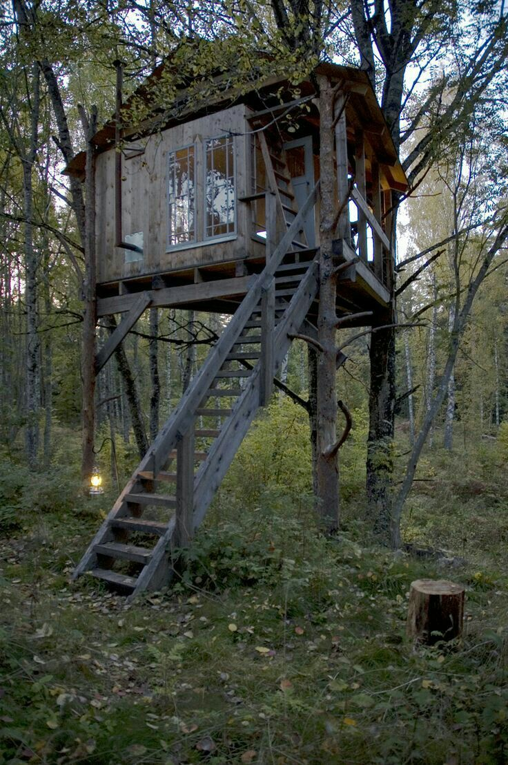 Pin By Sera Harmony On In The Tree Tops Tree House Shooting House Tree House Diy