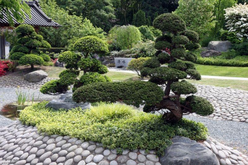 Zen garten im japanischen stil gestalten japanischer garten garten bonsai und garten ideen - Japanische gartenpflanzen ...