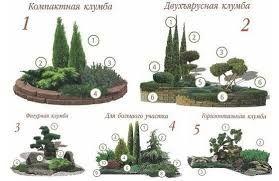 Картинки по запросу клумбы с хвойными растениями ...