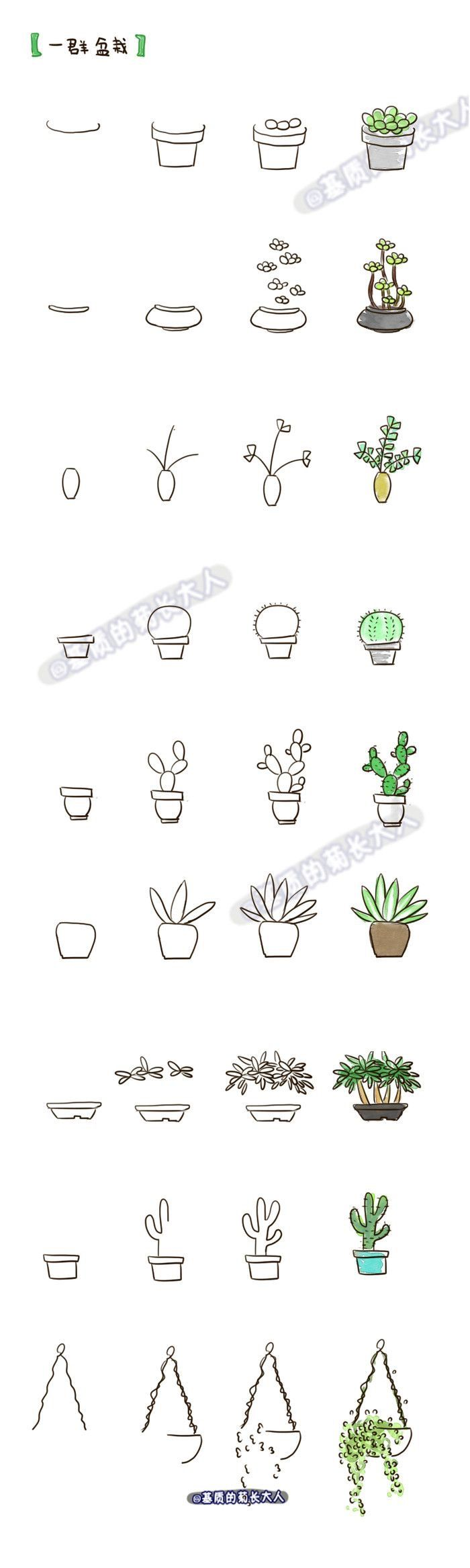 how to draw a cactus plant step by step