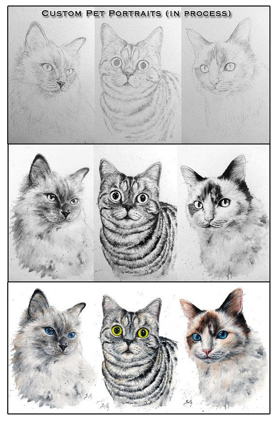 12x16 Original Custom Watercolour Pet Portrait V 2020 G Risovat Zhivotnyh Risunki Hudozhestvennye Zhurnaly