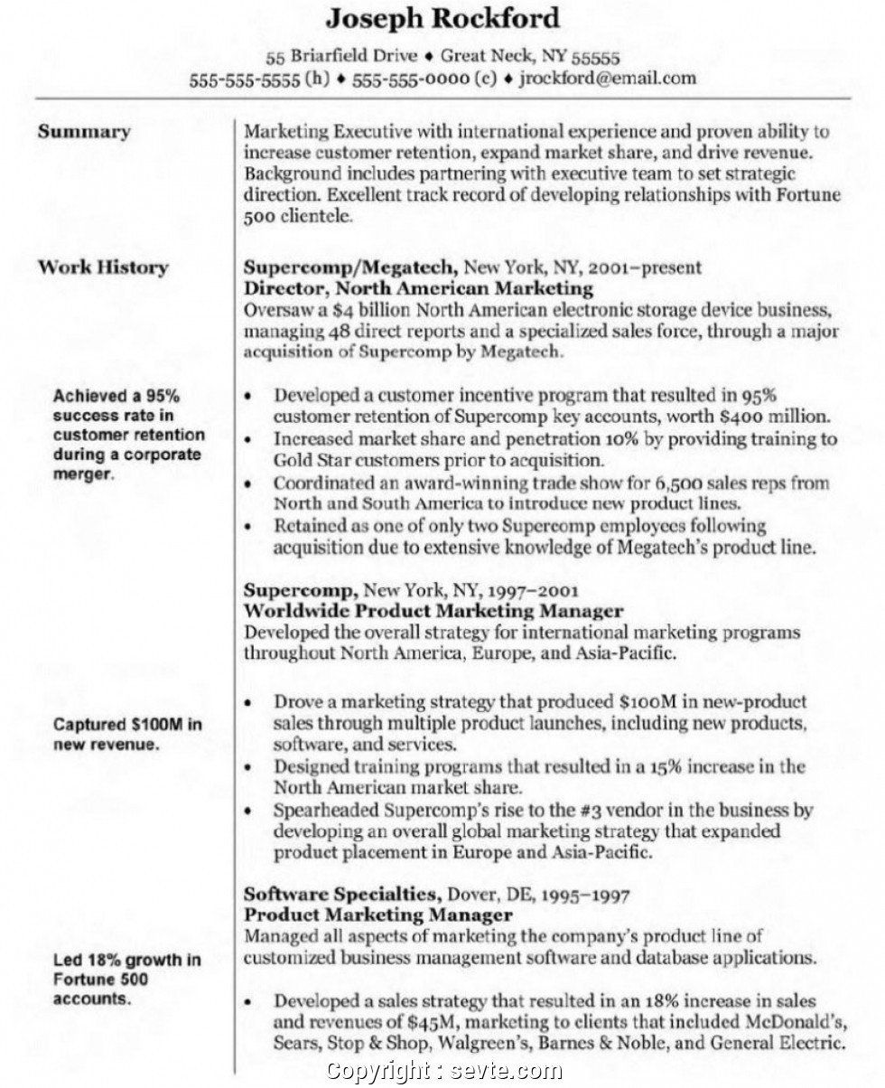 Project Manager Resume Summary Inspirational Manager Resume Sample