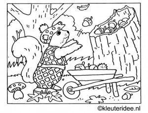 Kleurplaten Herfst Eekhoorn.Kleurplaat Eekhoorn