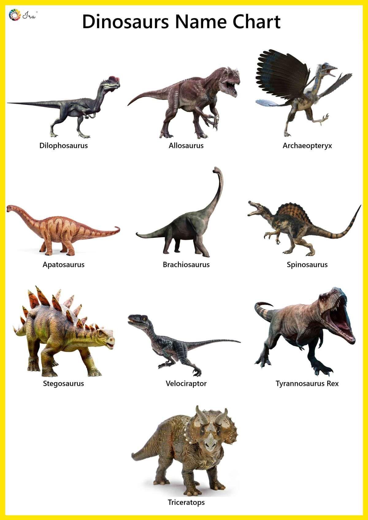 Pin On Dinosaur