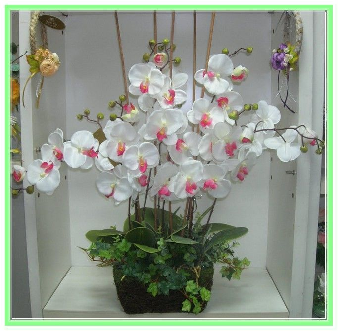 Orchid Flower Arrangements Ideas