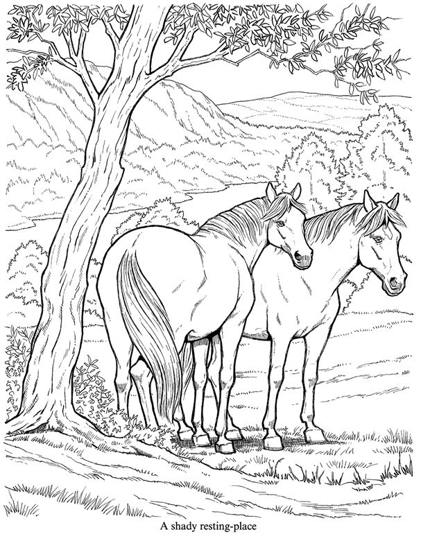 Coloring Page Of Two Wild Horses Horse Coloring Pages Animal Coloring Pages Horse Coloring