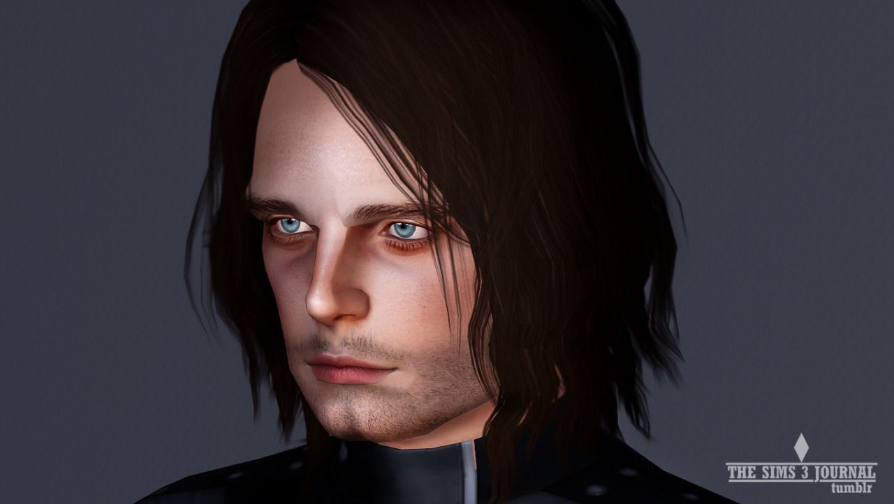 Sebastian Stan - The Sims 3 Journal