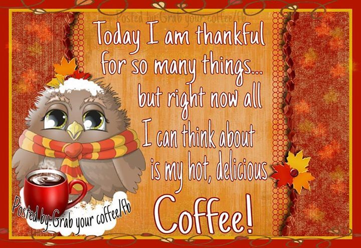 Right Now I Am Thankful For Coffee Happy Thanksgiving Quotes Thanksgiving Quotes Thanksgiving Pictures
