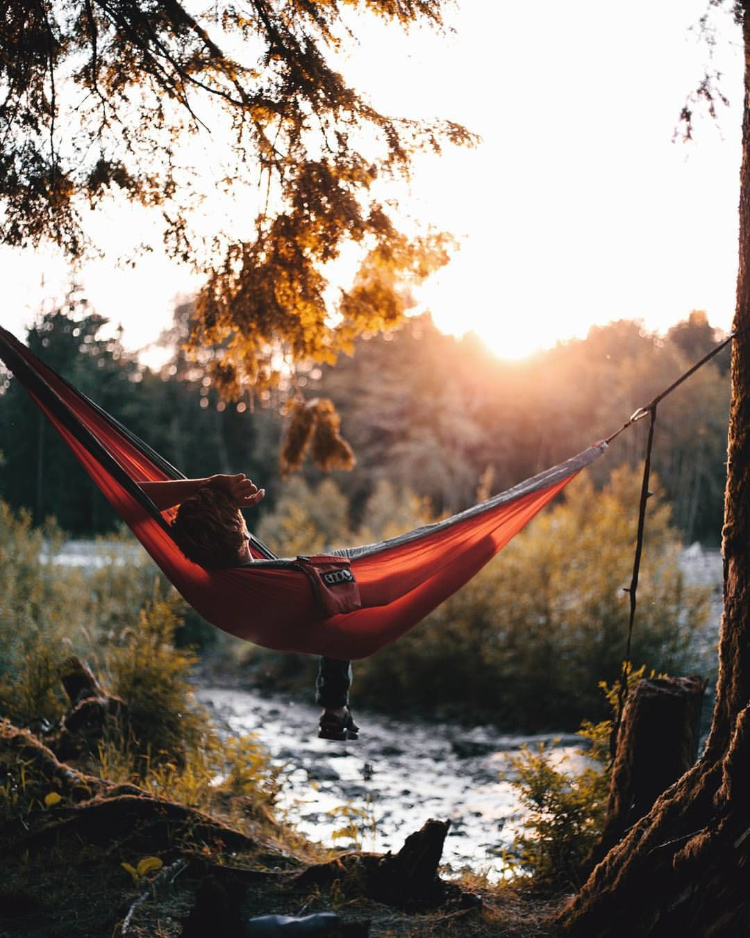 Pin by jim brown on enos hammocks pinterest girls wanderlust