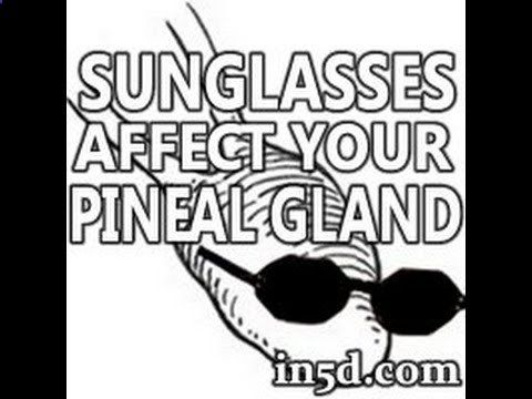 Wearing Sunglasses Can Affect Your Pineal Gland : In5D Esoteric, Metaphysical, and Spiritual Database