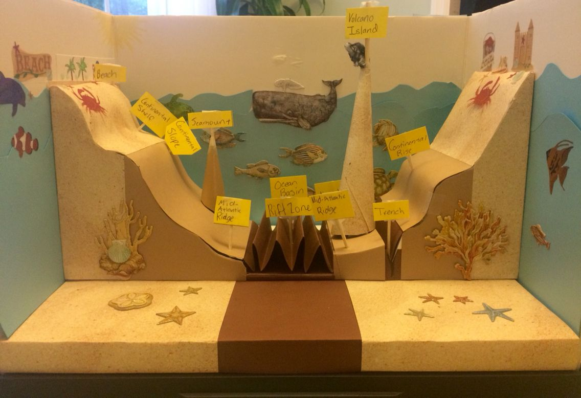 5th Grade Ocean Floor Project Educational Science Projects