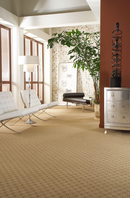 Pin by DeSitter Flooring on Carpet Carpet stores