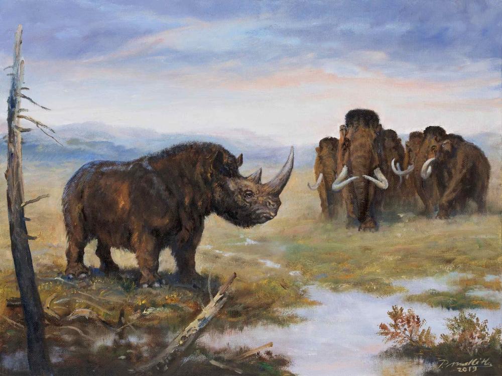 NOVÉ OBRAZY NEW IMAGES Prehistoric animals