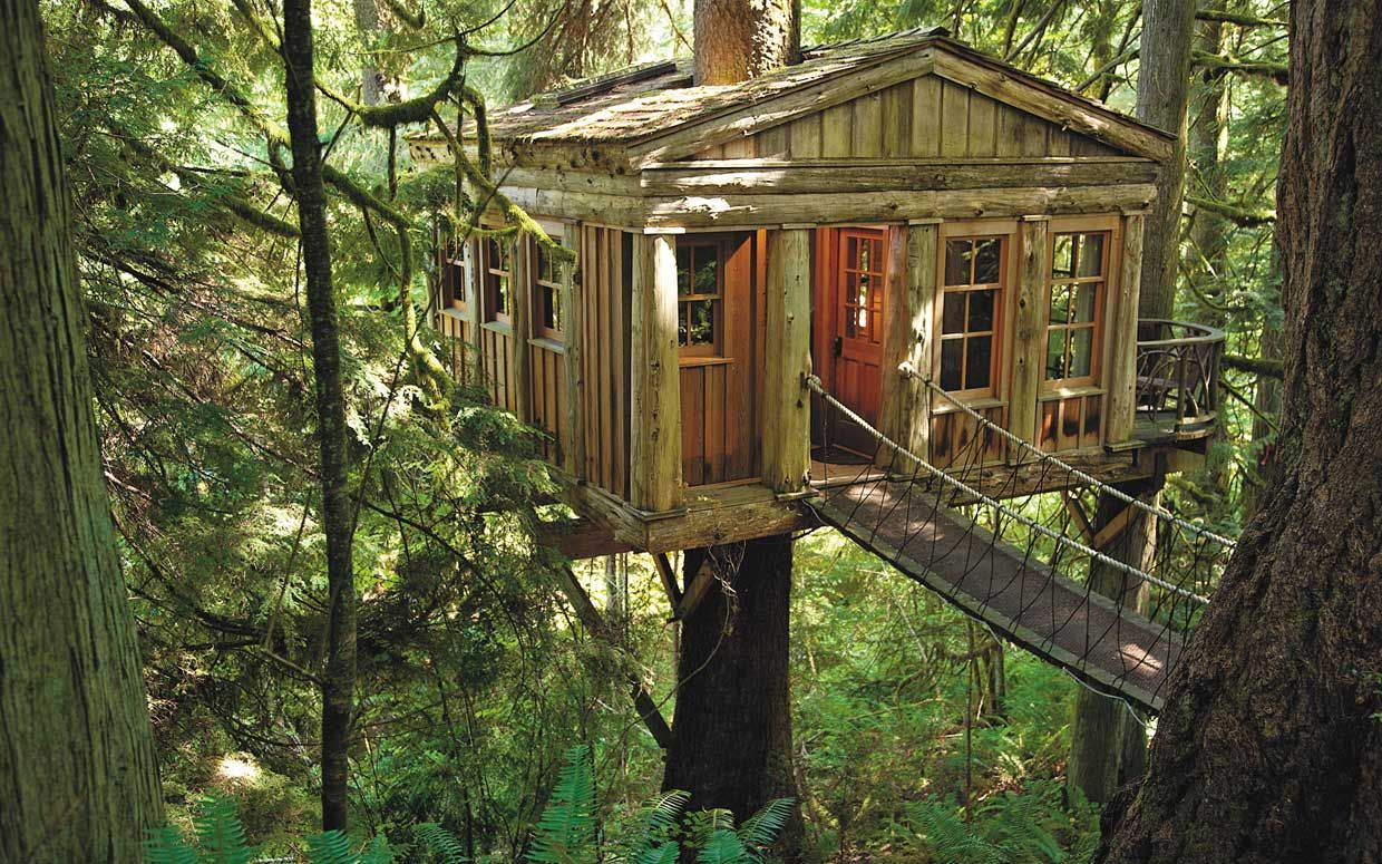 10+ images about treehouse on pinterest | hobbit hole, tree bed