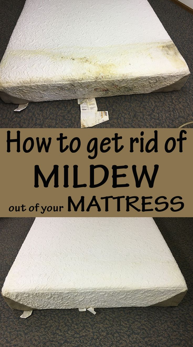 How To Get Rid Of Mildew Out Of Your Mattress Cleaningtutorials Net Your Cleaning Solutions Mattress Cleaning Cleaning Mold House Cleaning Tips
