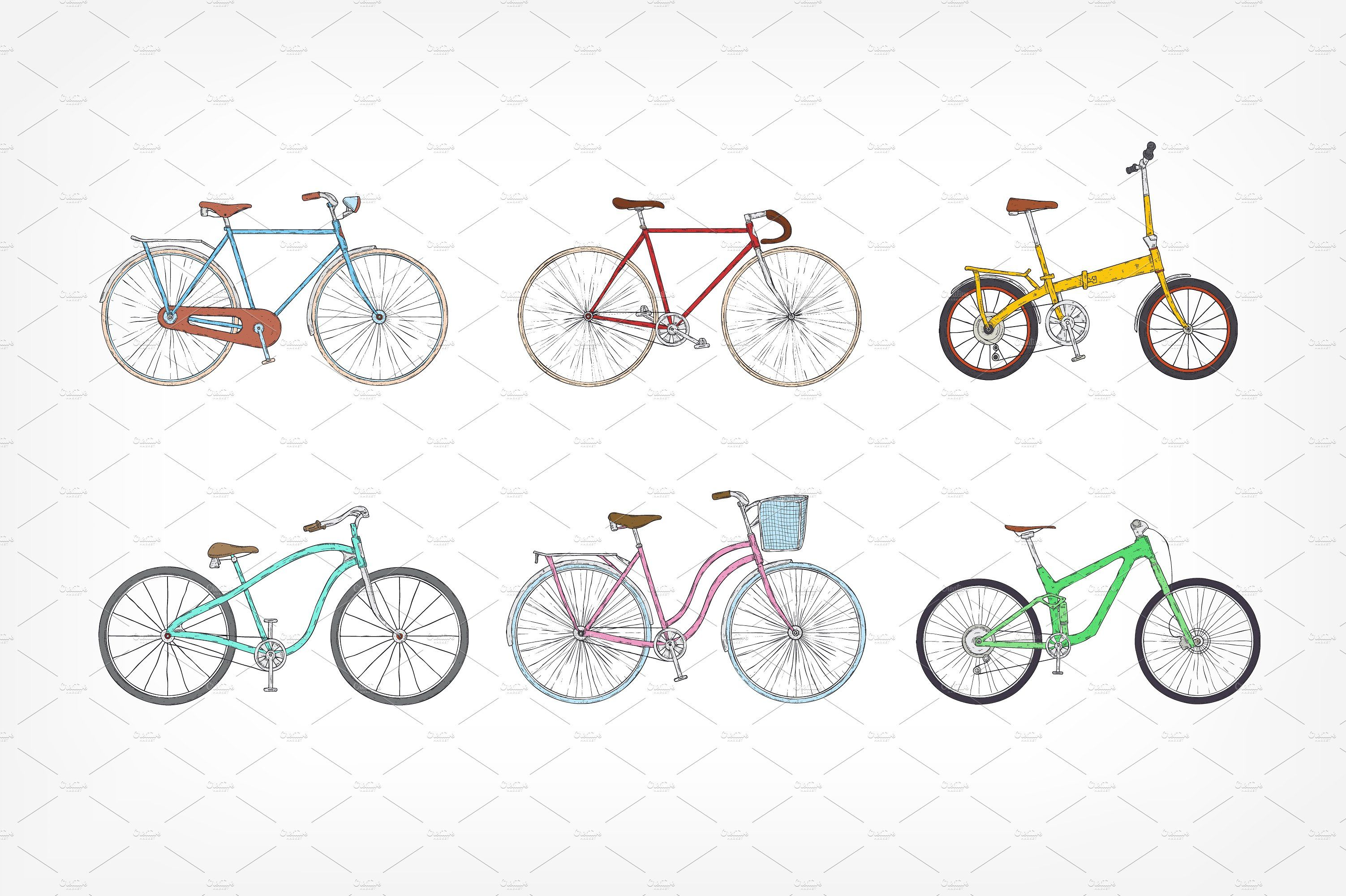 Set Of Different Types Bicycles Bicycle Bicycle Women Bike Details