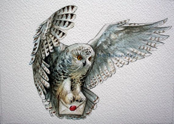 Owl snowy owl original watercolor tattoo lechuzas dibujos marcap ginas - Harry potter chouette ...