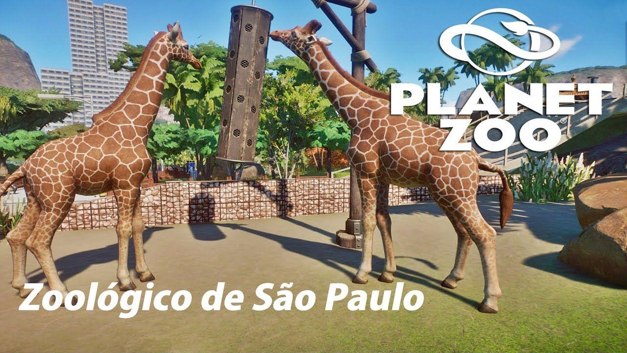 Planet Zoo Zoologico De Sao Paulo Em 2021 Zoologico De Sao Paulo Zoologico Planet