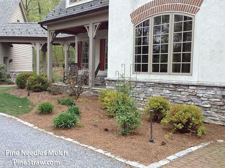 c98a2fcd564d83143a99f706a22e9ac9 - Are Pine Needles Good For Gardens