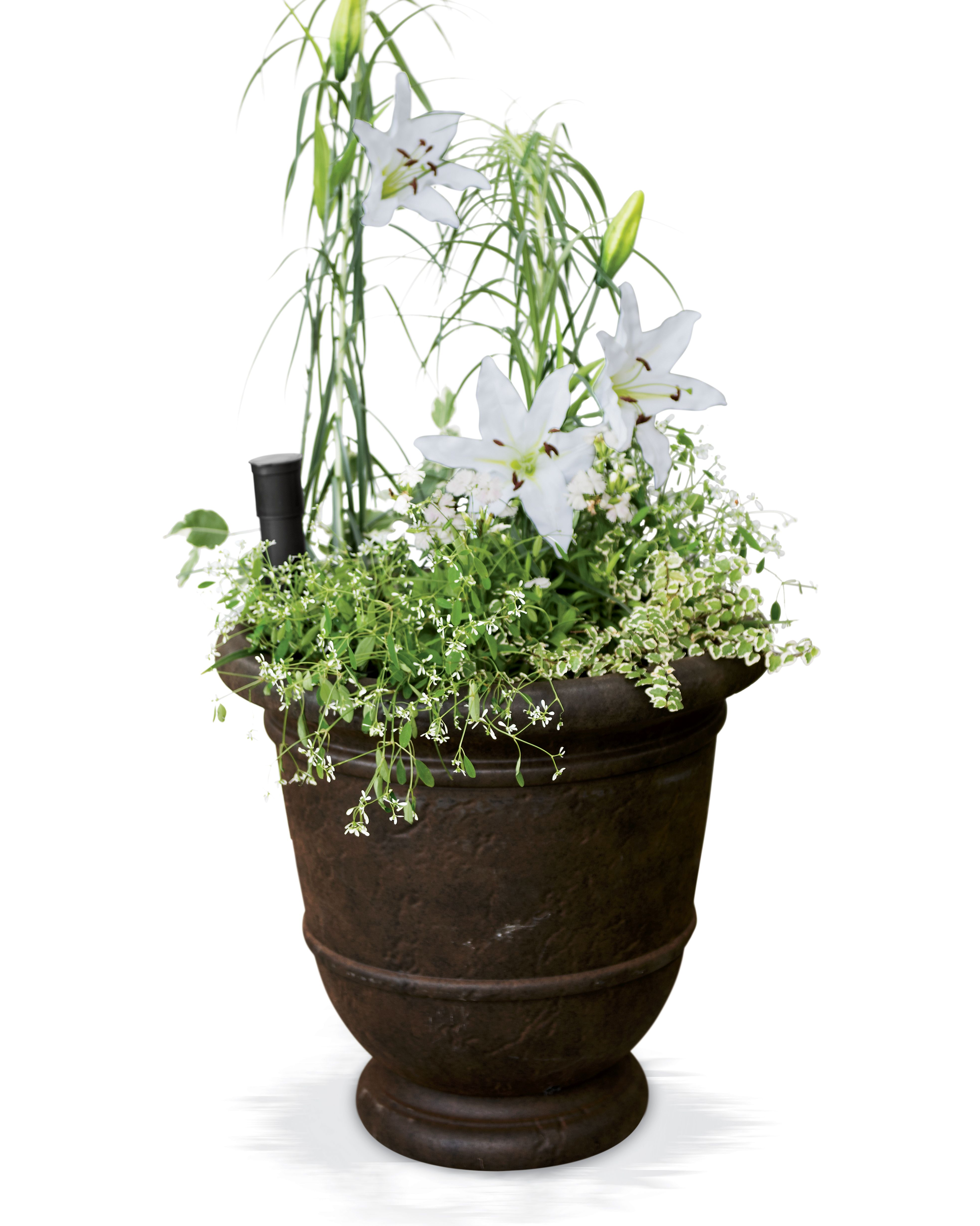 and ethan decor planters shop french clearance allen urns wire ca accents round en images null decorative planter