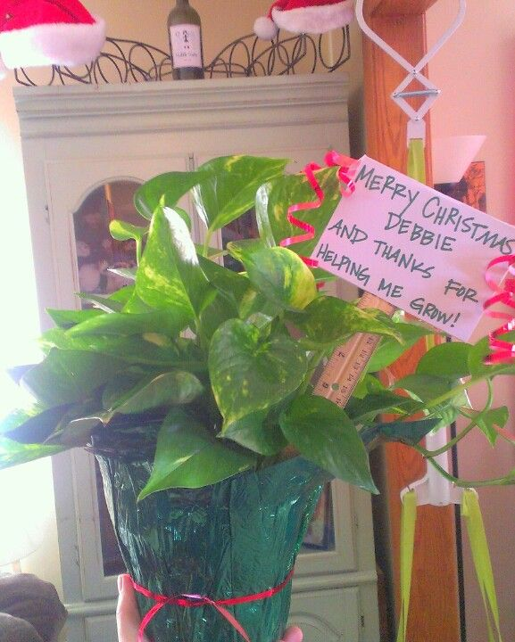 Perfect Daycare provider/teacher gift :) | Christmas | Pinterest ...