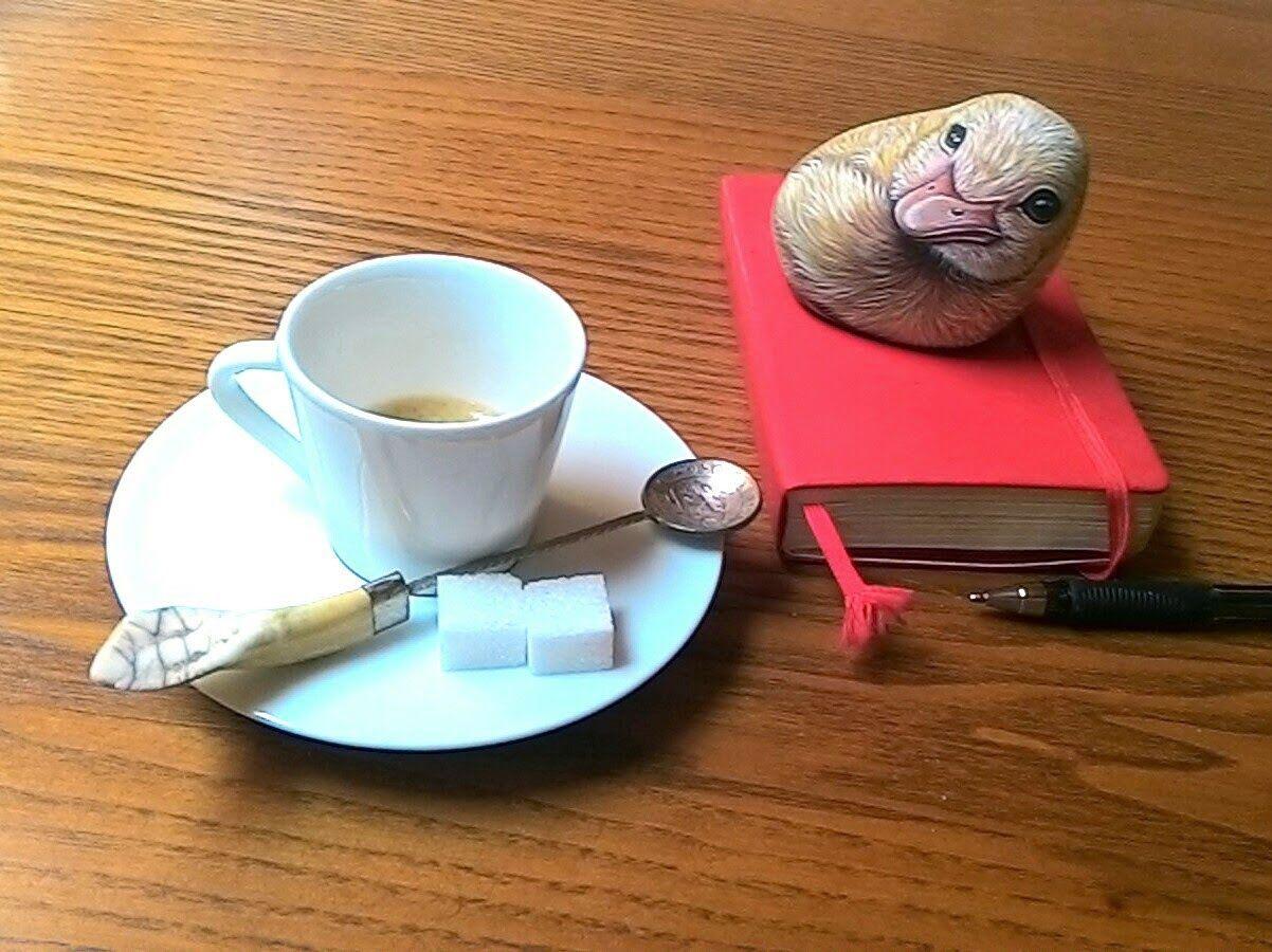 Sassi a p-arte: Papere, anatroccoli e...