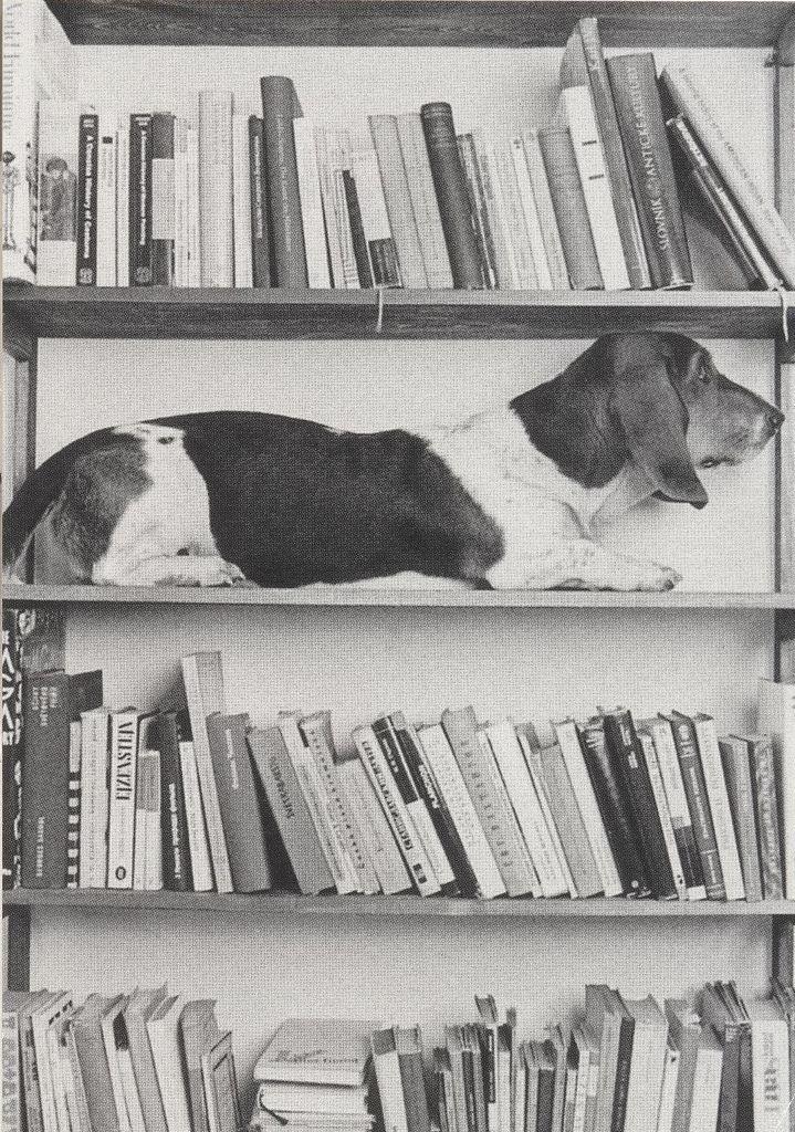 Books ???