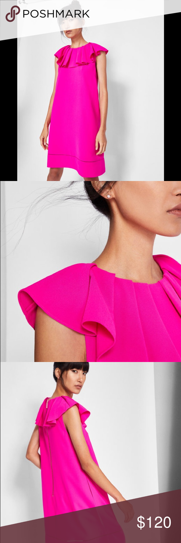 d14faea7c38452 Bright Pink · Ruffles · Neckline · Pretty · Ted Baker Clarees shift dress  CLAREES Ruffle neck shift dress Labeled as Ted size 0 COLOUR