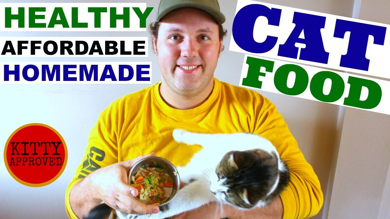 Quick easy healthy affordable cat food homemade cat treats quick easy healthy affordable cat food homemade forumfinder Images