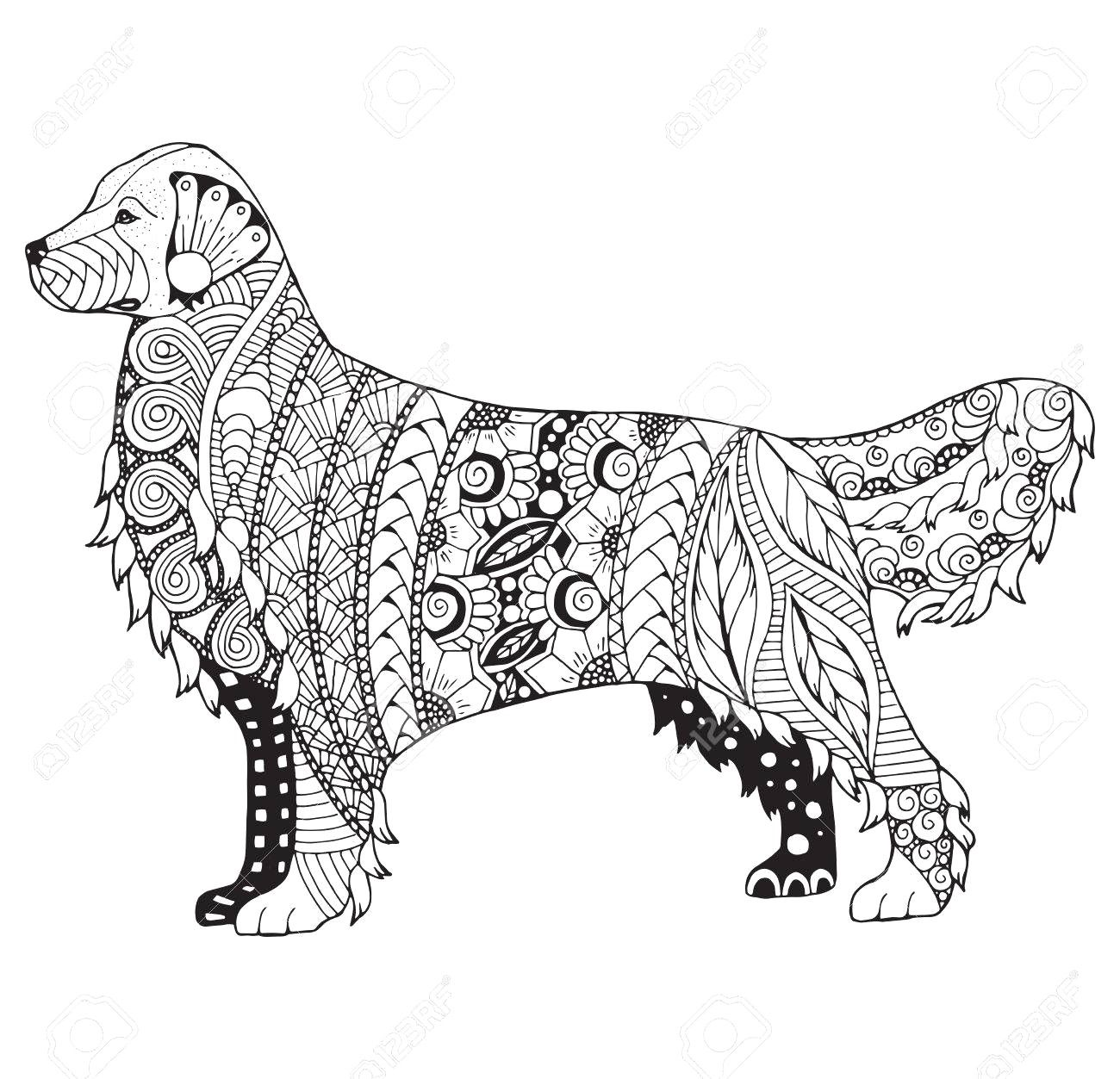 Golden Retriever Coloring Page Golden Retriever Coloring Pages 17
