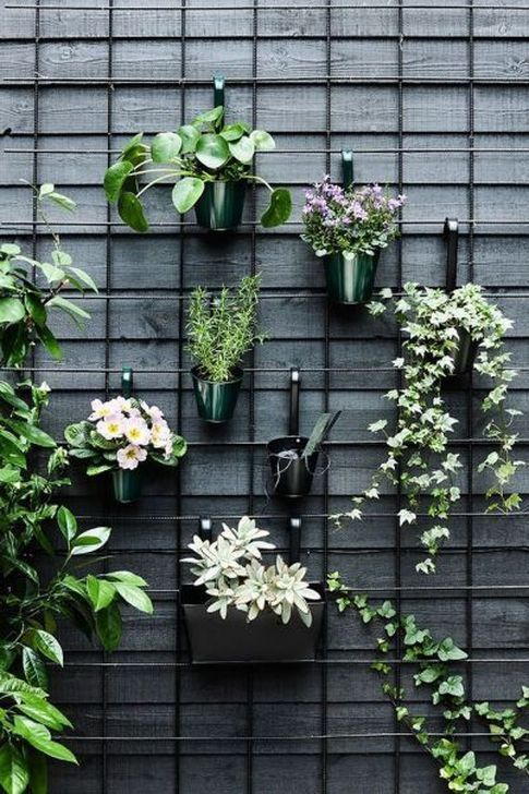 Photo of 48 Wonderful Diy Wall Gardens Outdoor Design Ideas To Try Asap – Emelyne's Blog
