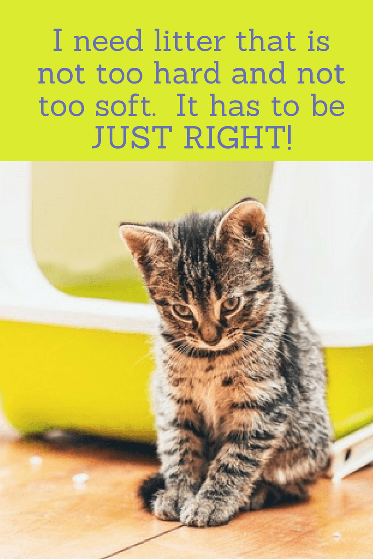 Declawed Cats Need Litter That Is Soft But Still Has Traction Declawed Cats Often Reject The Litter Box So Sometimes Some Ste Cat Litter Cat Care Homemade Cat