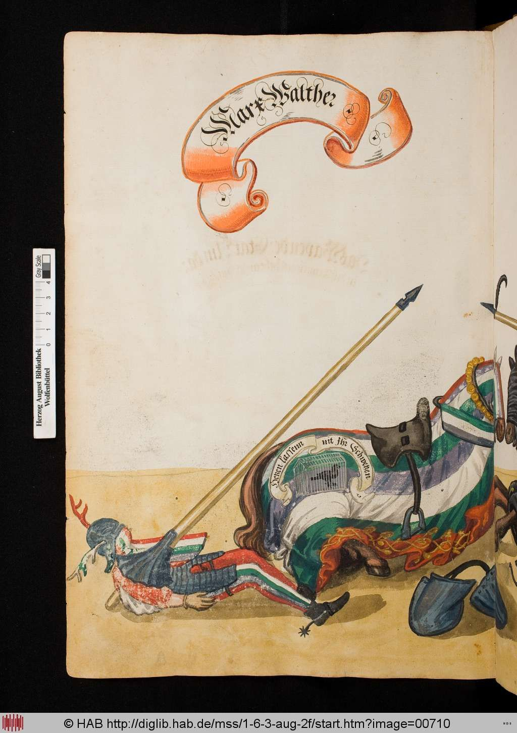 from a 16C Turnierbuch compiled for Jeremias Schemel of Augsburg = Wolfenbuettel, HAB cod. guelf 1.6.3 Aug 2o -- via the HAB website.image 710. The fallen jouster is Marx Walther again