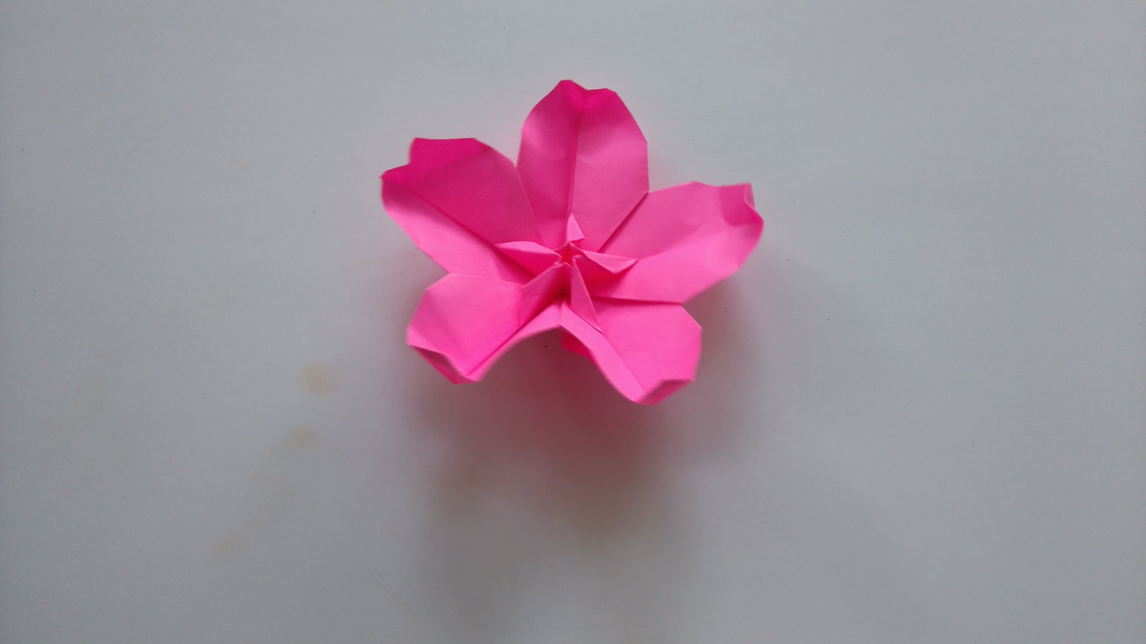 Origami Tutorial How To Fold Origami Cherry Blossom Art Projects Pinterest Origami Blume Origami And Blumen