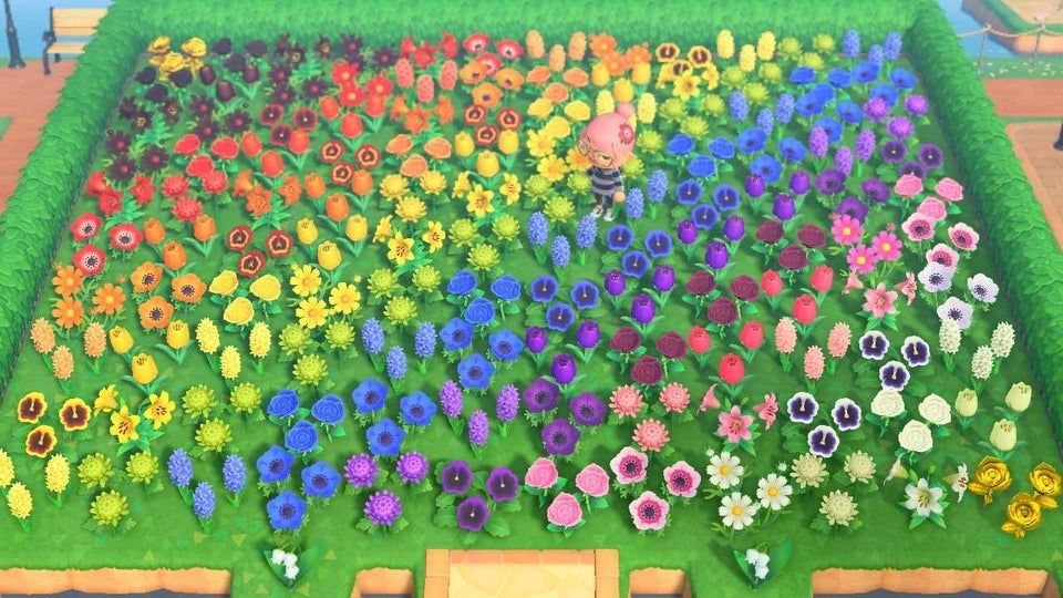 Finally Bred All The Flowers To Make My Rainbow Garden My Island Is Now Teeming With Flowers Because Of It In 2020 Rainbow Garden Animal Crossing Animal Crossing Game
