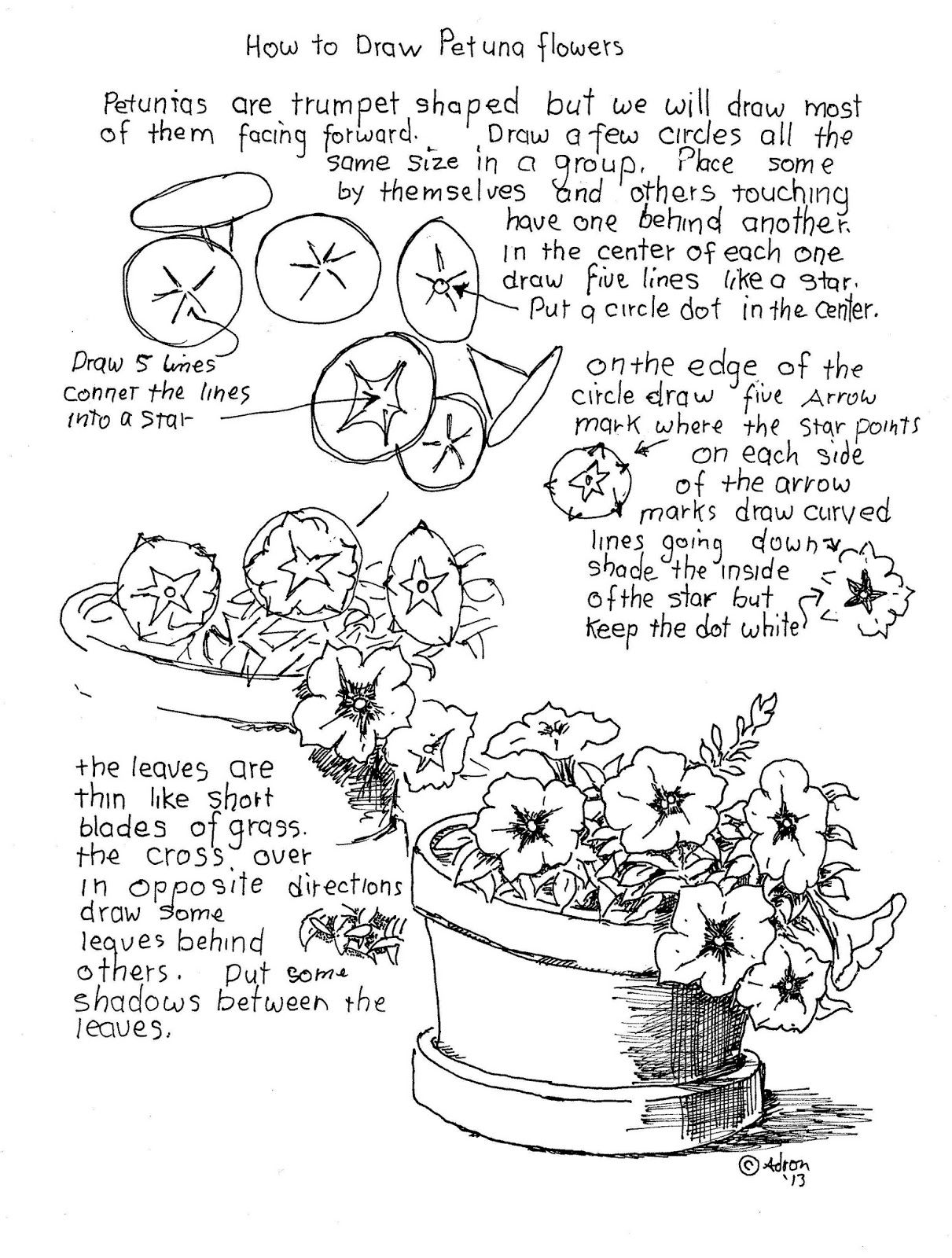 How To Draw Worksheets For The Young Artist How To Draw Petunia Flowers Worksheet