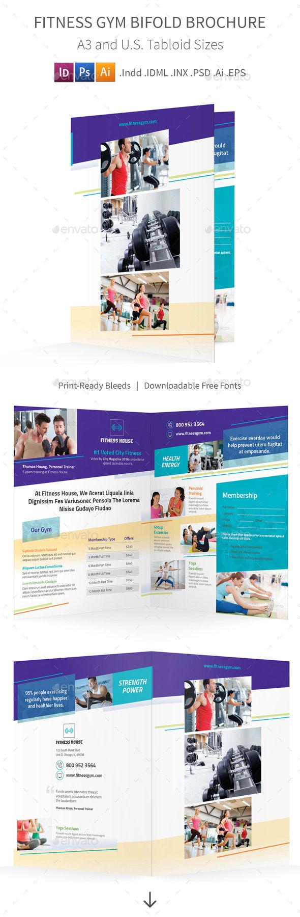 Fitness Gym Bifold  Halffold Brochure   Brochures Gym And