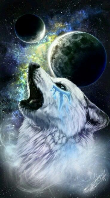 Pin By Daniela Vargas On Native And Wolf Loup Loup Dessin Loup