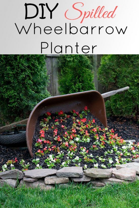 DIY Tipped Wheelbarrow Planter is part of Wheelbarrow planter, Diy planters, Backyard garden, Diy garden, Garden yard ideas, Wheelbarrow - How to recycle an old wheelbarrow into a DIY tipped wheelbarrow planter to incorporate into your landscape  Be sure to prep it correctly first!