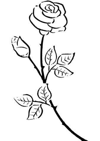 Rosen Ausmalbilder Ausmalbilder Ausmalen Rose Schablone