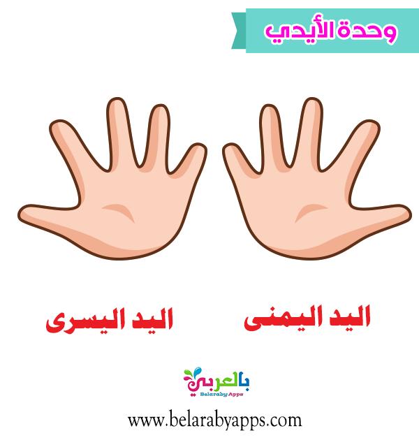 صور ورسومات ملونة وحدة الأيدي رياض أطفال عن بعد بالعربي نتعلم In 2021 Peace Gesture Peace Okay Gesture
