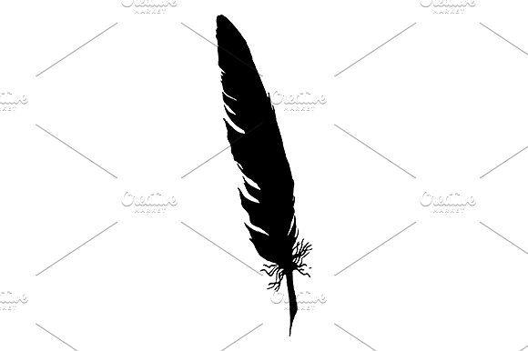 Line Art Feather : Art vector monochrome feather bird isolated isolate black