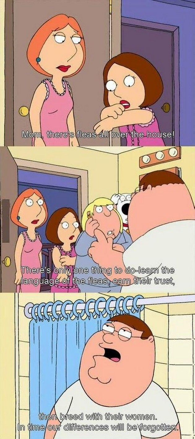 Funny Family Guy 24 Pics Family Guy Family Guy Quotes Family Humor