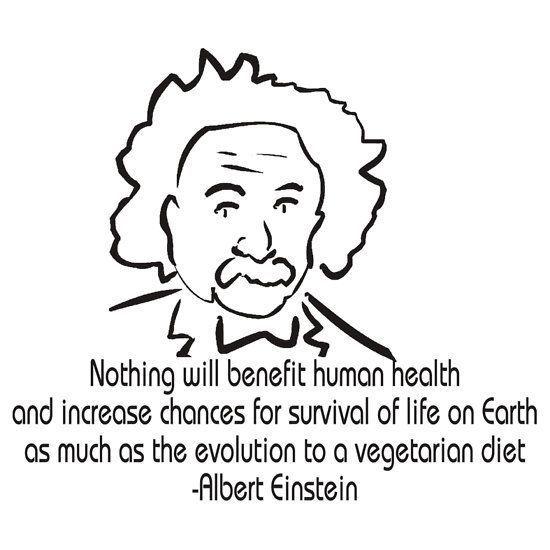 'Vegetarian Quote Albert Einstein' T-Shirt by T-ShirtsGifts #vegetarianquotes Vegetarian Quote Albert Einstein #vegetarianquotes 'Vegetarian Quote Albert Einstein' T-Shirt by T-ShirtsGifts #vegetarianquotes Vegetarian Quote Albert Einstein #vegetarianquotes