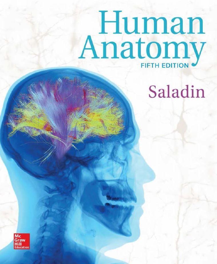 Human Anatomy 5th Edition by Kenneth S. Saladin PDF | Tetxbook ...
