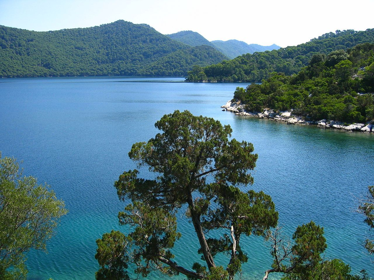 Great Lake Island Of Mljet Croatia Croatia Wikipedia Mljet Croatia National Parks Visit Croatia