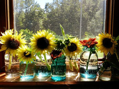 Best 25 Sunflower Room Ideas On Pinterest Sunflower