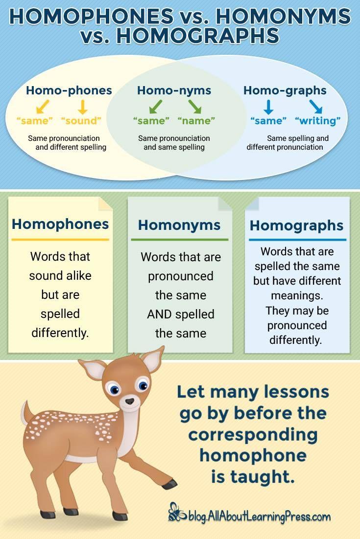 How To Teach Homophones 3 Downloads The Homophone Machine Teaching Homophones Homophones Homographs [ 1102 x 735 Pixel ]