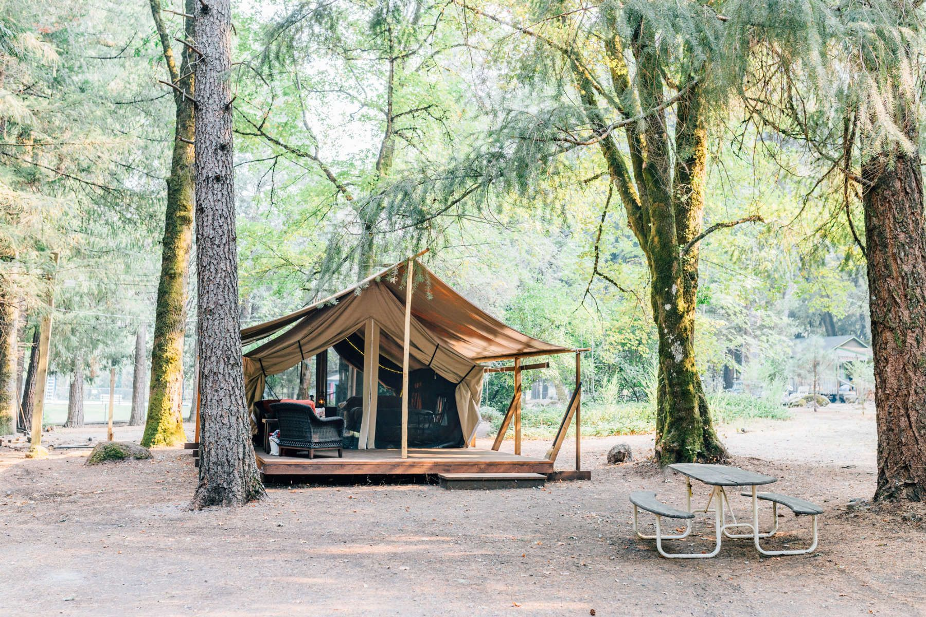 Furnished Glamping tent Tent glamping, Glamping, Pine grove
